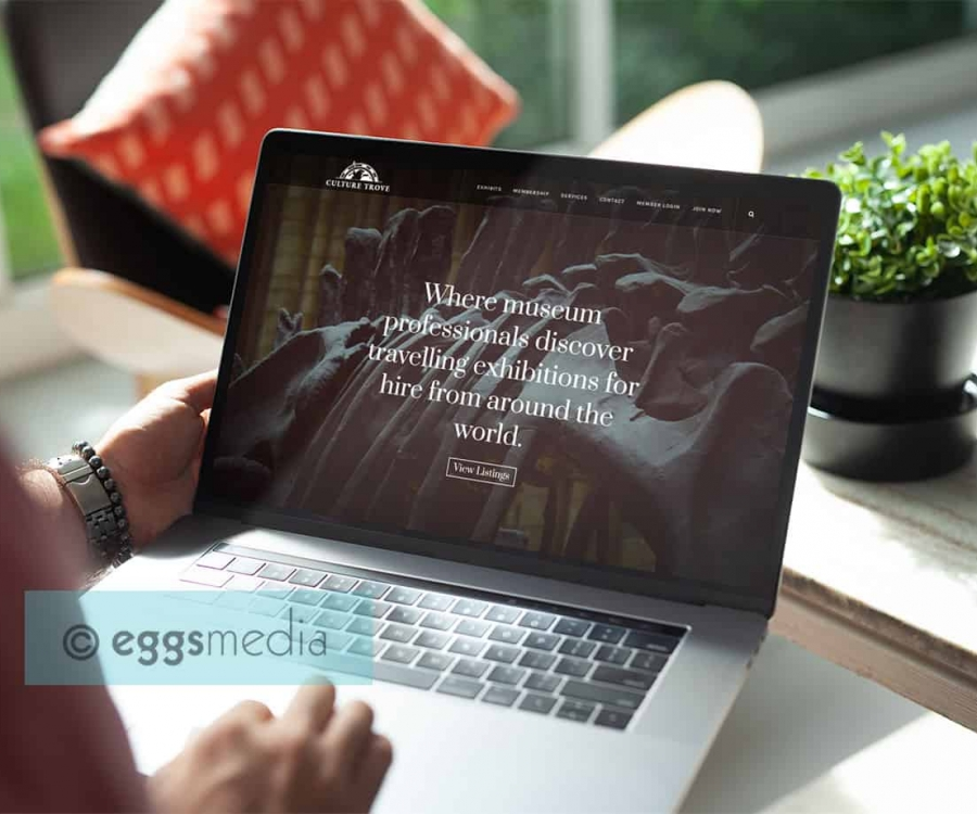 eggs media web development toronto