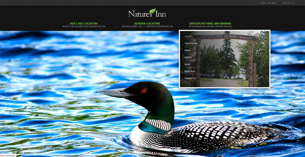 eggs media case study natures inn new website after